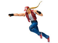 Bandai D Arts King of Fighters Terry Bogard Action Figure
